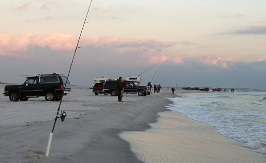 Surf reports 2002 for Long island surf fishing report